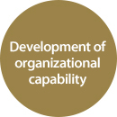 Development of organizational capability